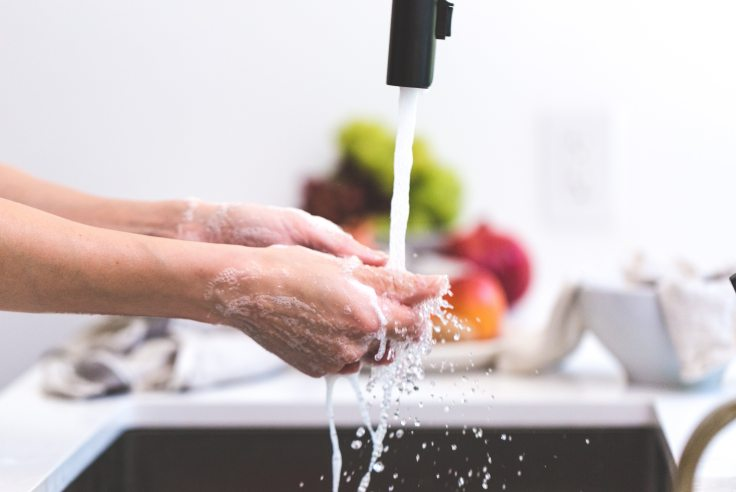 cooking-hands-handwashing-545013